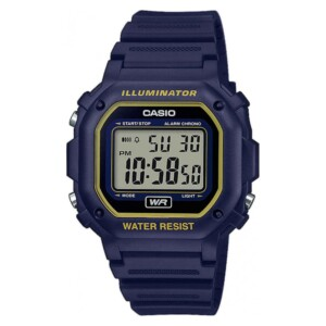 Zegarek Casio Collection F108WH2A2