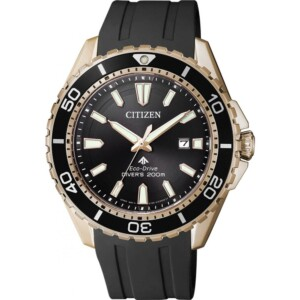 Citizen PROMASTER BN019317E