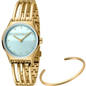Esprit Ladies Watches ES1L031M0045