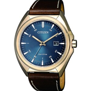 Citizen Leather AW157311L