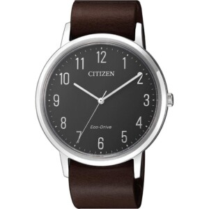 Citizen Eco Drive BJ650101E
