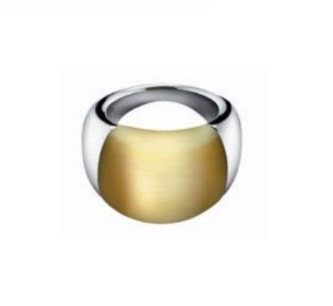 Calvin Klein CK ELLIPSE KJ03GR010406 1