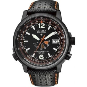 Citizen PROMASTER SKY AS202509E