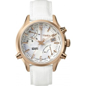 Timex Inteligent Quartz Divers TW2P87800