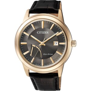 Citizen SPORTS AW701305H